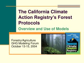 The California Climate Action Registry�s Forest Protocols  Overview and Use of Models
