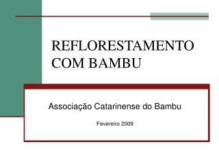 REFLORESTAMENTO COM BAMBU