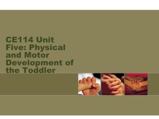 CE114 Unit Five: Physical and Motor Development of the Toddler