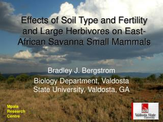 Effects of Soil Type and Fertility and Large Herbivores on East-African Savanna Small Mammals