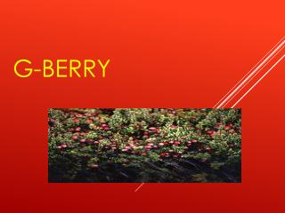 G-Berry
