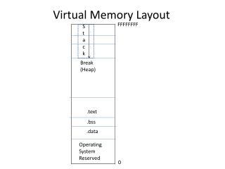 Virtual Memory Layout