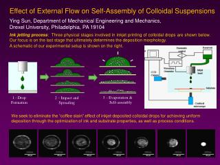 Effect of External Flow on Self-Assembly of Colloidal Suspensions