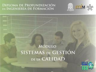CAPACITACI�N EN SISTEMAS DE GESTI�N DE CALIDAD BAJO ISO 9001:20008