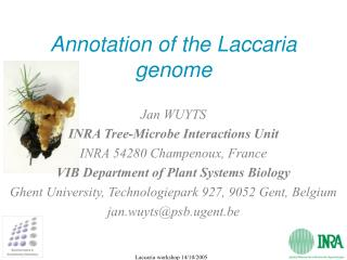 Annotation of the Laccaria genome