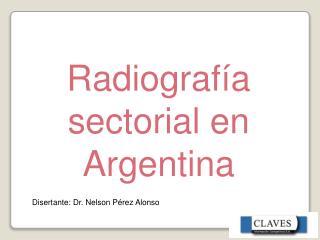 Radiografía sectorial en Argentina
