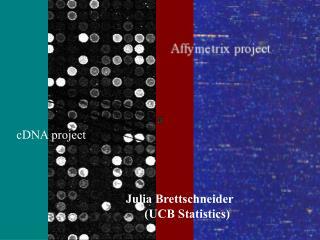 cDNA-Project