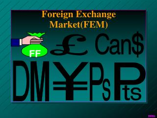 Foreign Exchange Market(FEM)