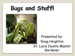 Bugs and Stuff