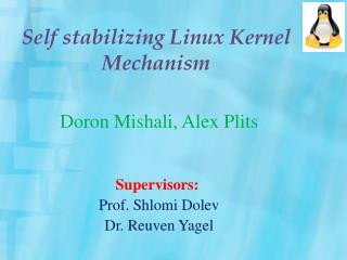 Self stabilizing Linux Kernel Mechanism