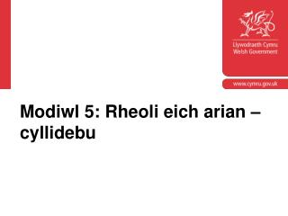 Modiwl 5: Rheoli eich arian – cyllidebu