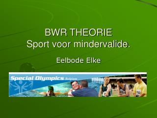 BWR THEORIE Sport voor mindervalide.