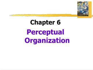 Chapter 6 Perceptual Organization