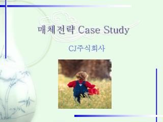 매체전략  Case Study