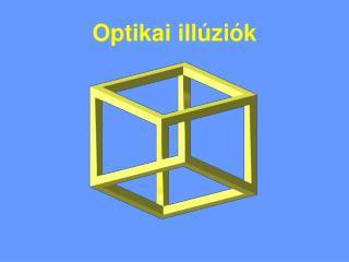 Optikai illúziók