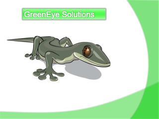 GreenEye Solutions
