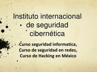 Instituto internacional de seguridad cibern�tica