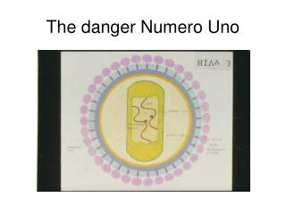 The danger Numero Uno
