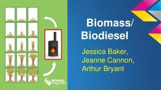 Biomass/ Biodiesel