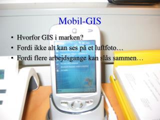 Mobil-GIS