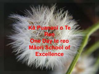 K? Puanan? o Te Reo One Day te reo M?ori School of Excellence