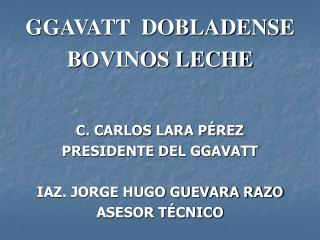 GGAVATT  DOBLADENSE BOVINOS LECHE C. CARLOS LARA PÉREZ PRESIDENTE DEL GGAVATT