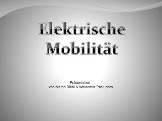 Präsentation   von Marco Diehl & Waldemar Pastuchov