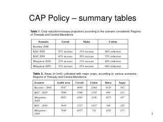 CAP Policy – summary tables
