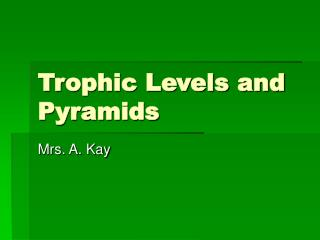 Trophic Levels and Pyramids