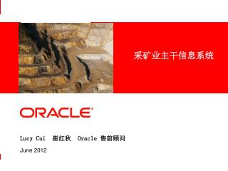Lucy Cui   崔红秋  Oracle  售前顾问