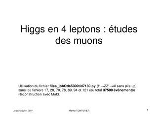 Higgs en 4 leptons : études des muons