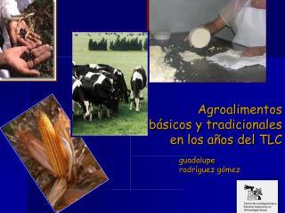 Agroalimentos  básicos y tradicionales  en los años del TLC