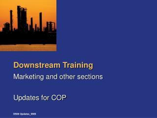 Downstream Training