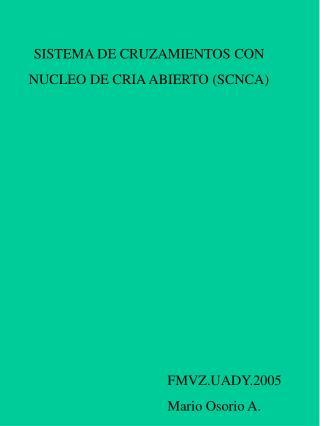 SISTEMA DE CRUZAMIENTOS CON  NUCLEO DE CRIA ABIERTO (SCNCA)