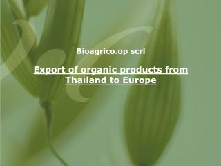 Bioagrico.op scrl Export of organic products from Thailand to Europe
