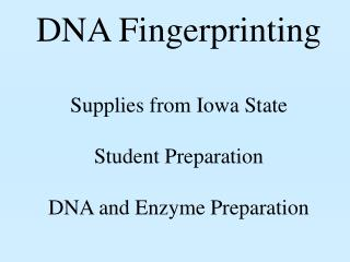 DNA Fingerprinting Supplies from Iowa State Student Preparation DNA and Enzyme Preparation