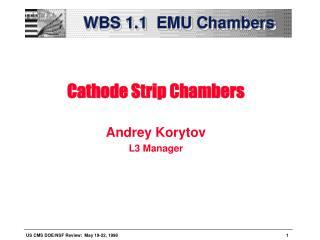 WBS 1.1  EMU Chambers