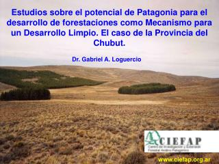Dr. Gabriel A. Loguercio