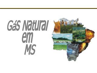 Gás Natural  em   MS