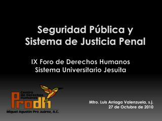 Seguridad P blica y Sistema de Justicia Penal