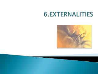 6.EXTERNALITIES