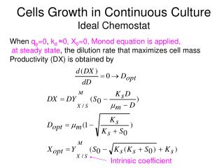 Cells Growth in Continuous Culture Ideal Chemostat