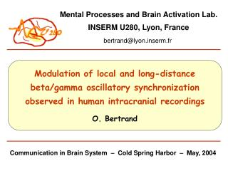 Communication in Brain System  –  Cold Spring Harbor  –  May, 2004
