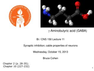 Bi / CNS 150  Lecture 11 Synaptic inhibition; cable properties of  neurons