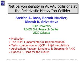 Net baryon density in Au+Au collisions at the Relativistic Heavy Ion Collider