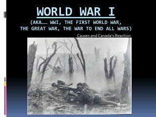 World War I  (aka……  WWI, The First World War,  The  Great War, The War to End All Wars)