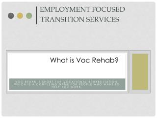 Employment Focused   Transition Services