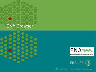 ENA Browser