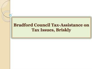 Bradford Council Tax-Assistance on Tax Issues, Briskly