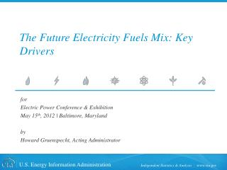 The Future Electricity Fuels Mix: Key Drivers